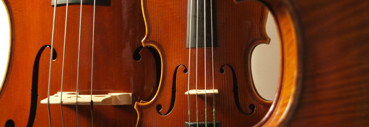 Violin instrument up for rent