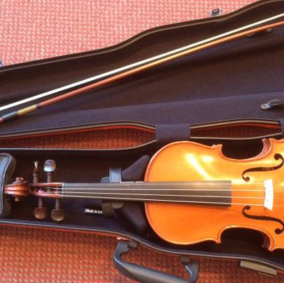 winter care of violin